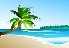 Paradise Island. Illustration of a beautiful tropical island Stock Photography