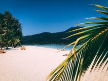Paradise Island Crystal Clear Sea, Blu, palms, on fyre royalty free stock photos