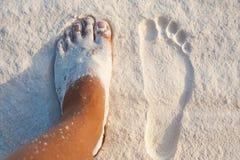 Paradise Island Perfect White Sand Stock Photography