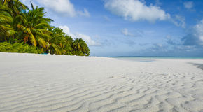 Paradise island. A secluded island paradise in the Pacific Royalty Free Stock Photography