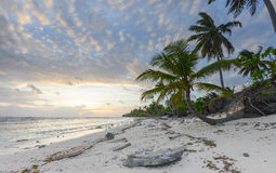 Paradise island. A secluded tropical island paradise in the pacific Royalty Free Stock Photos