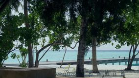 Tropical sandy beach with palm trees and a pier. stock video footage