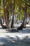 Paradise Islands in Guna Yala, Kuna Yala, San Blas, Panama. Sunset. Sunrise. Paradise islands in Guna Yala, Kuna Yala, San Blas, Panama. Sunrise. Sunset. Palms royalty free stock photos