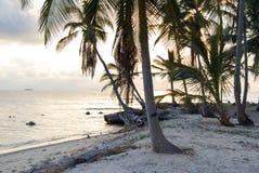 Paradise Islands in Guna Yala, Kuna Yala, San Blas, Panama. Sunset. Sunrise. Paradise islands in Guna Yala, Kuna Yala, San Blas, Panama. Sunrise. Sunset. Palms royalty free stock photo