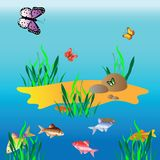 Paradise islet on shoal Royalty Free Stock Images