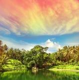 Paradise lake palm trees sunset blue sky vintage. Paradise lake with palm trees and sunset blue sky. Tropical nature landscape. Ubud, Bali, Indonesia. Vintage Royalty Free Stock Images