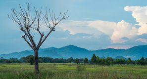Paradise mountain. The beautiful nature in thailand Royalty Free Stock Photos