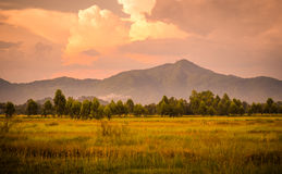 Paradise mountain. The beautiful nature in thailand Royalty Free Stock Images