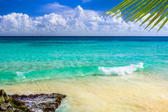Paradise nature, sand, sea water, rocks, palm tree leaves and su Royalty Free Stock Images