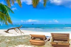 Paradise tropical beach palm Stock Photography