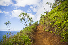 Paradise pathway in Hawaii. Mountainous pathway through Hawaiian coastal mountains Royalty Free Stock Images