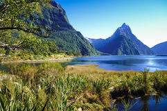 Paradise places in New Zealand / Lake Teanua / Milford Sound. Milford Sound / Piopiotahi is a fiord in the south west of New Zealand`s South Island, within Stock Photos
