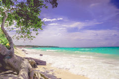 Paradise Playa Blanca beach of Baru island by Cartagena in Colombia. Paradise Playa Blanca beach of Baru bin Colombia royalty free stock photography