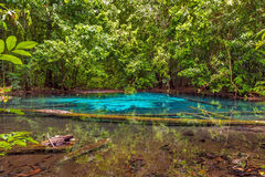 Paradise Pool Krabi Province, Thailand Stock Photos