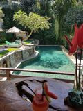 Paradise pool stock photography