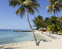 Paradise! Royalty Free Stock Photo