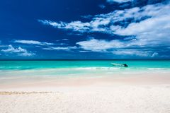 Paradise resort beach palm tree sea Dominican Republic. Caribbean Sea coast white sand resort beach palm tree Dominican Republic Stock Photo