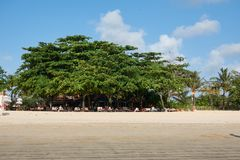 Paradise resting place on the beach under the trees.  stock photos