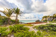 Paradise Scenery of Tulum at tropical coast and beach. Mayan ruins of Tulum, Quintana Roo, Mexico royalty free stock photography