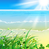 01 paradise Sea grass Royalty Free Stock Photo