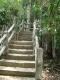 Paradise Stairway Royalty Free Stock Image