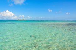 Paradise-Strand auf Insel caye Carrie Bow Cay Field Station, karibisches Meer, Belize Tropische Zieleinheit lizenzfreie stockbilder