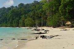 Paradise-strand bij het Eiland van Andaman en Nicobar-, India stock afbeeldingen