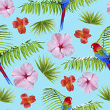 Paradise summer pattern with tropical decoration Royalty Free Stock Images