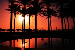 Paradise sunrise on palm beach Royalty Free Stock Images