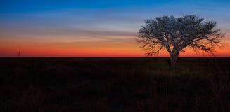 Paradise sunset Stock Images
