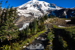 Paradise trail in Mount Rainier National Park, Washington, USA Stock Photo