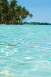 Paradise transparent water. Blue green water in Tahiti!Selective focus Royalty Free Stock Photography