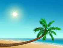 Paradise tropical beach. Inclined palm tree, clear sky, sun, sea and sand. Vector cartoon illustration Royalty Free Stock Images