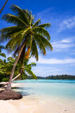 Paradise tropical beach and lagoon in Moorea Island Royalty Free Stock Photo