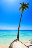 Paradise tropical beach Stock Photos