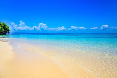 Paradise tropical beach Royalty Free Stock Image