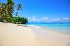 Paradise tropical beach Stock Images