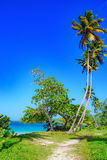 Paradise tropical beach Stock Photo