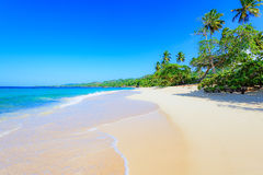 Paradise tropical beach Royalty Free Stock Photo