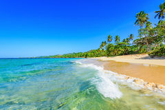 Paradise tropical beach Stock Image