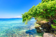 Paradise tropical beach Royalty Free Stock Photos