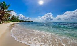 Paradise tropical beach palm the Caribbean Sea Stock Photo