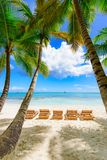 Paradise tropical beach palm Royalty Free Stock Image