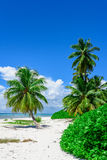 Paradise tropical beach palm Stock Photo