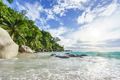 Paradise tropical beach with rocks,palm trees and turquoise wate. Amazing beautiful paradise tropical beach with granite rocks,palm trees and turquoise water in Stock Photo