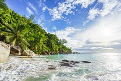 Paradise tropical beach with rocks,palm trees and turquoise wate. Amazing beautiful paradise tropical beach with granite rocks,palm trees and turquoise water in Royalty Free Stock Photo