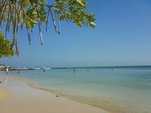 Paradise Tropical Island in Cartagena Stock Image