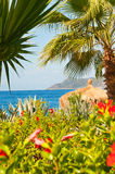 Paradise of Turkey: sea, palm trees, exotic flowers Stock Photography