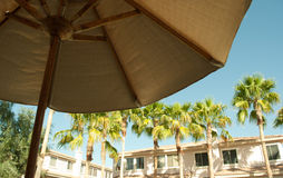 Paradise Umbrella Resort. View of Palm trees and resort villas from the standpoint behind a umbrella for shade stock photo