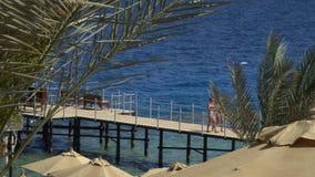 paradise Vacanze e concetto di turismo Ricorso tropicale 17 03 2018, Sharm-el-Sheikh, Egitto archivi video
